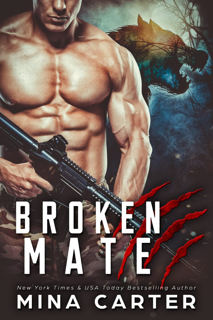 Broken Mate cover image