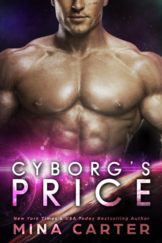 Book Cover: Cyborg's Price