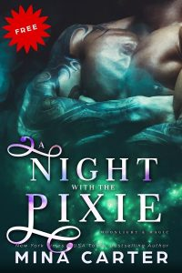 Book Cover: A Night with the Pixie